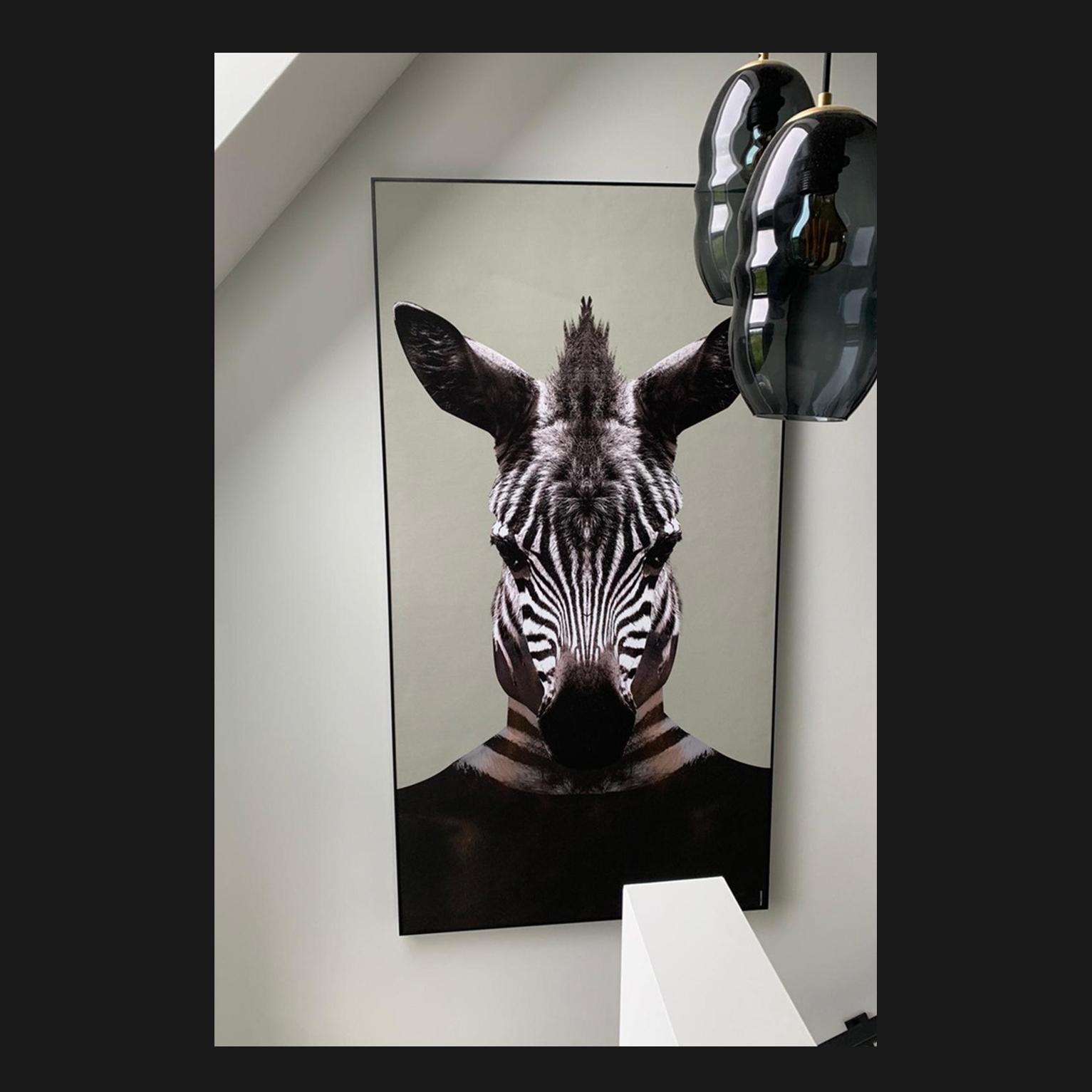 Painted Zebra Green   Walldsigns