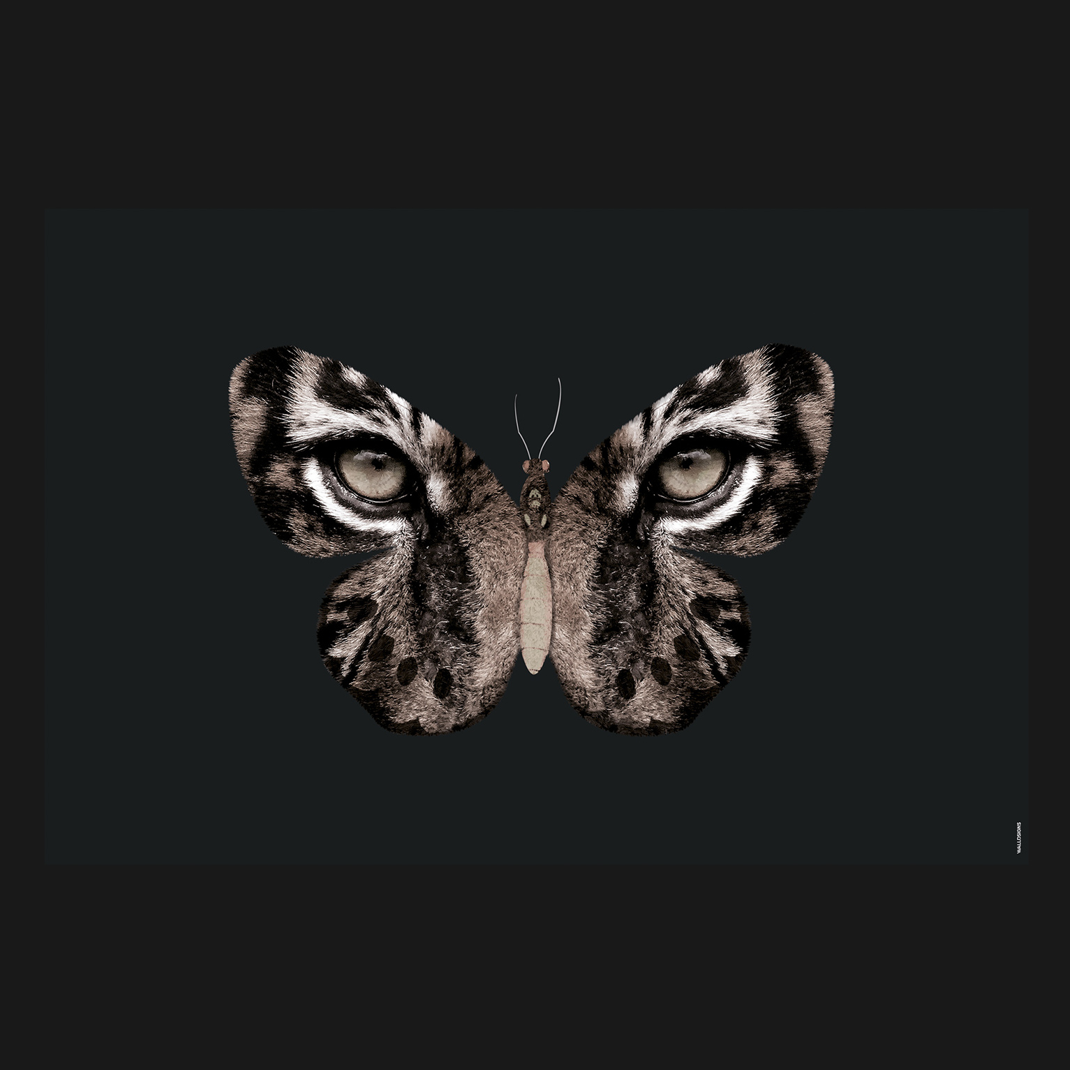 Flying Tiger Dark   Walldsigns