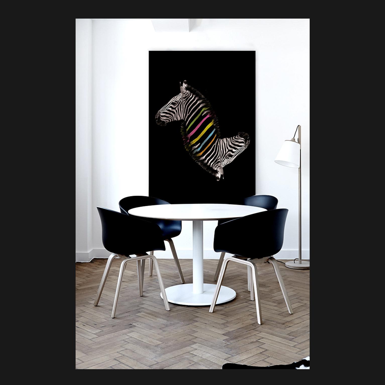 Rainbow Zebra   Walldsigns
